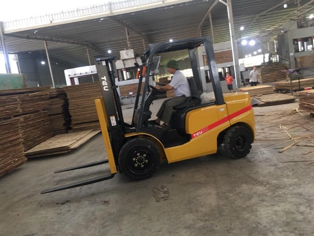 Xe nâng sử dụng trong ngành chế biến gỗ